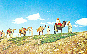 Passion Play Spearfish Sd Postcard P17939
