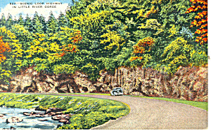 Little River Gorge Smoky Mountains National Park TN Postcard p17943 (Image1)