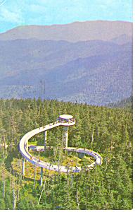 Tower Clingmans Dome, TN Postcard 1966 (Image1)