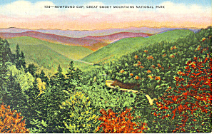 Newfound Gap,TN Postcard (Image1)