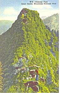 Chimney Tops Smoky Mountains National Park TN Postcard p17997 (Image1)