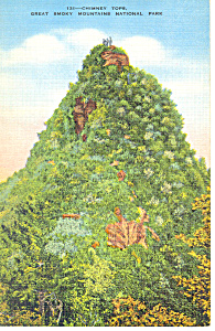 Chimney Tops,TN Postcard (Image1)