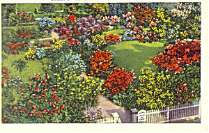 Garden at The Hermitage ,TN Postcard (Image1)
