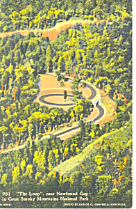 Loop near  Newfound Gap ,TN Postcard 1939 (Image1)