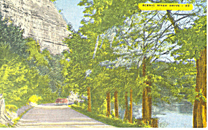 River Drive New Braunfels Texas Postcard p18068 (Image1)