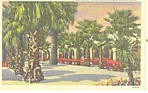 North Beach Corpus Christi ,Texas Postcard (Image1)