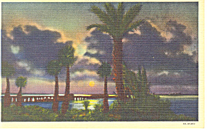 Moonlight Corpus Christi Bay Texas Postcard p18077 (Image1)