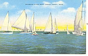 Sail Boats Corpus Christi Texas Postcard p18078 (Image1)