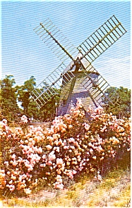 Eastham Cape Cod MA Windmill Postcard (Image1)