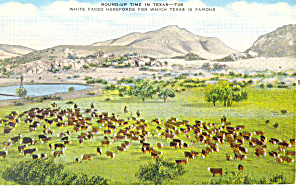 Roundup Time in Texas Postcard p18090 (Image1)