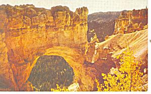 Natural Bridge Bryce Canyon National Park UT Postcard p18151 (Image1)