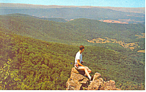 Shenandoah National Park VA Postcard p18283 (Image1)