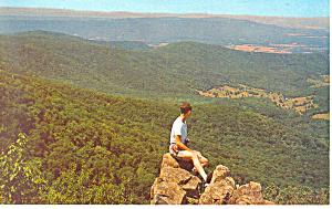 Shenandoah National Park, VA Postcard (Image1)