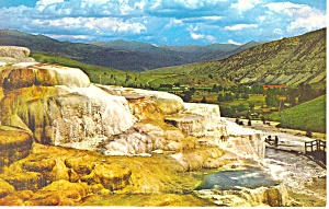 Minerva Terrace Yellowstone National Park WY Postcard p18453 (Image1)