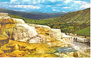 Minerva Terrace Yellowstone National Park WY Postcard (Image1)