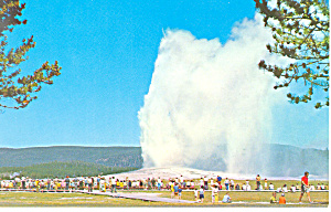 Old Faithful Geyser Yellowstone National Park WY Postcard p18457 (Image1)