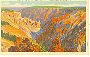 Grand Canyon Yellowstone National Park WY Postcard (Image1)
