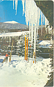 Tuckerman's Ravine, NH Postcard 1959 (Image1)