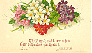 Bible Verse Acts 111:15 Card (Image1)