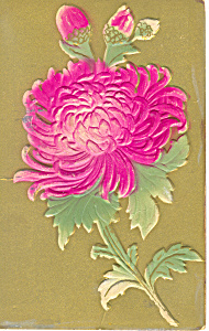 Old Time Embossed Flower Postcard P18873 1916