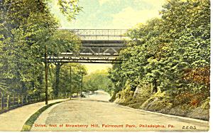 Fairmont Park Philadelphia Pennsylvania p18944 (Image1)