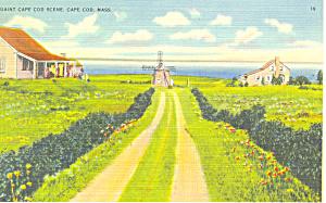Quaint Cape Cod Scene,Cape Cod, MA Postcard (Image1)