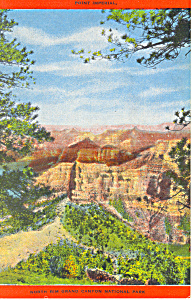 Point Imperial Grand Canyon National Park Postcard p19100 (Image1)