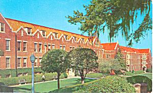 Florida State University Tallahassee Florida Postcard p19139 (Image1)