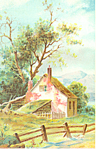 Artwork Of A Rural Cottage Postcard P19287