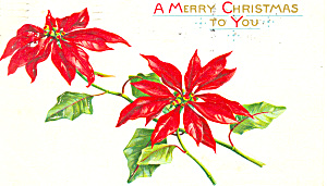 A Merry Christmas to You Postcard 1912 (Image1)
