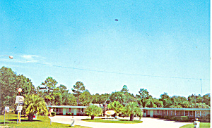 Springs Motel  Homosassa Springs  Florida Postcard p19384 (Image1)
