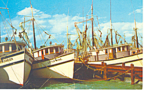 Shrimp Fleet  Key West   Florida p19425 (Image1)