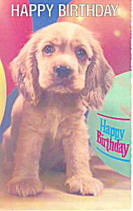 Happy Birthday Puppy Postcard p19509 (Image1)