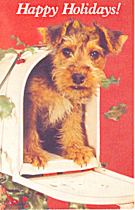 Happy Holidays Puppy in Mail Box Postcard p19510 (Image1)