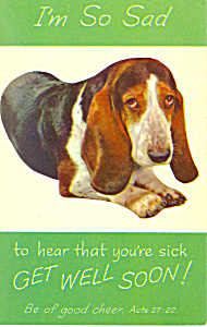 Get Well Postcard with cute dog p19649 (Image1)