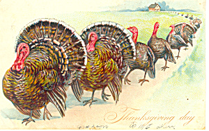 Raphael Tuck Thanksgiving Day Postcard Series 123