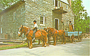 Amish Draft Horses With Wagon Load Of Grain P19818