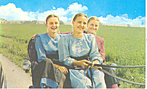 Amish Girls out for a Buggy Ride (Image1)