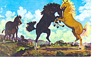 Battle of the Stallions by Vern Parker Postcard p19932 (Image1)
