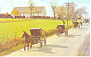 Mennonite Carriages at Church (Image1)
