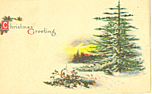 Christmas Greeting Postcard p21066 (Image1)