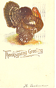 Thanksgiving Greeting Turkey (Image1)