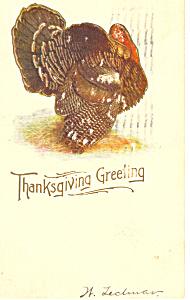Thanksgiving Greeting Turkey Postcard p21150 (Image1)
