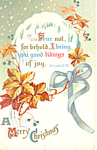 A Merry  Christmas Luke 2:10 (Image1)