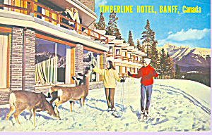 Timberline Hotel, Banff, Canada (Image1)