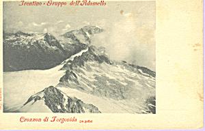 Trentino Italy  Gruppo dell Adamello p21374 (Image1)