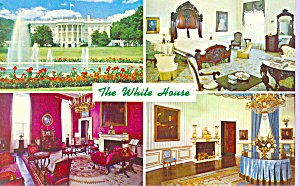 Views of The White House, Washington DC (Image1)