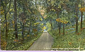 Ross Park Binghampton New York p21619 (Image1)