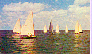Races On Little Egg Harbor New Jersey P21624