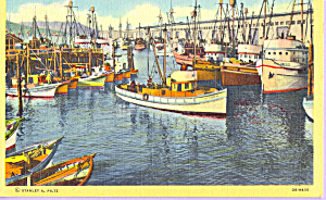 Purse Seiners at Fisherman s Wharf San Francisco CA p21735 (Image1)